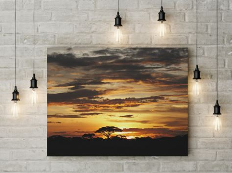 landscapes-canvas